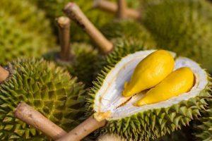 Bệnh tiểu đường có nên ăn sầu riêng?