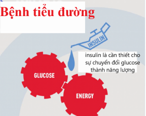 bệnh tiểu đường ăn khoai lang được không
