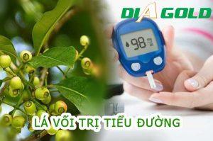 Lá vối trị bệnh tiểu đường